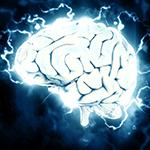 De Jongh Optometry - Your eyes and the brain